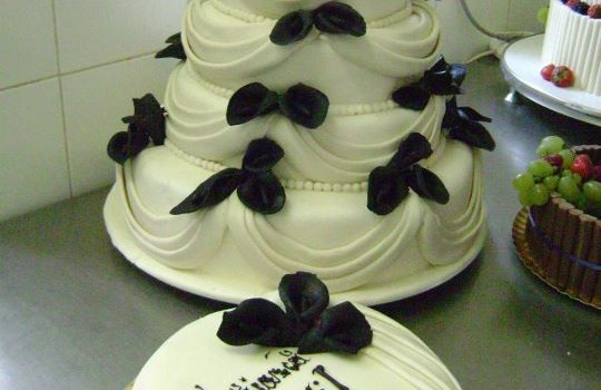Modele tort nunta, tort nasi