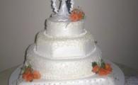 tort nunta model 24